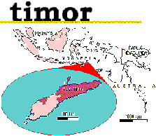an introduction to the former portuguese southeast asian colony of east timor Former portuguese colony, that is the newest state in southeast asia  east timor the largest muslim country in terms of population indonesia most people in myanmar, thailand, and cambodia follow  vietnam the southeast asian nation that is still ruled by a communist regime vietnam angkor wat is in what country cambodia the khmer.